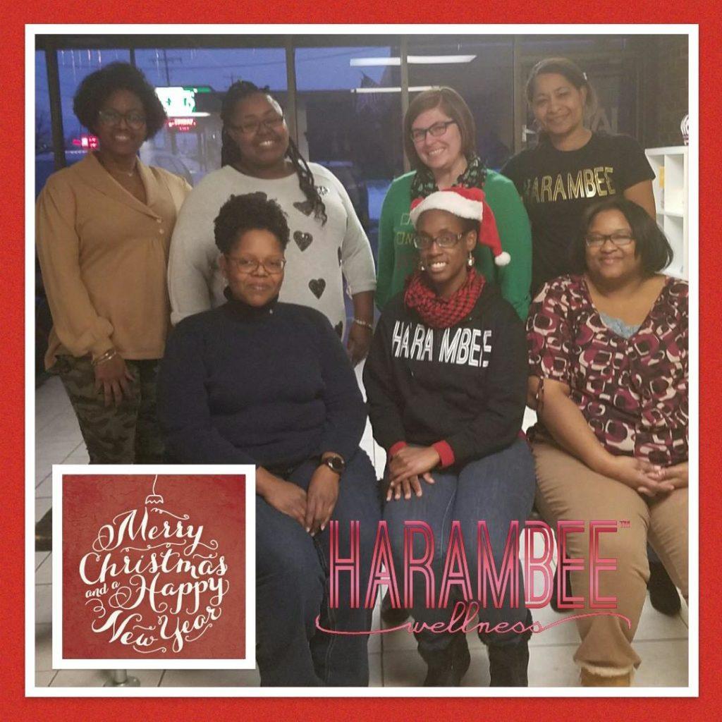 2017 Harambee Holiday Soiree