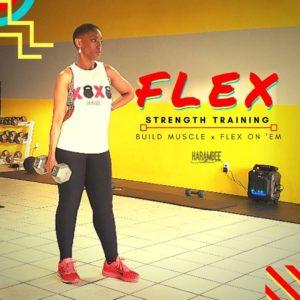 FLEX-2019